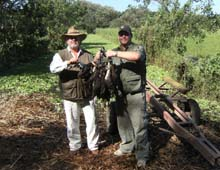 Nicaragua Duck and Dove